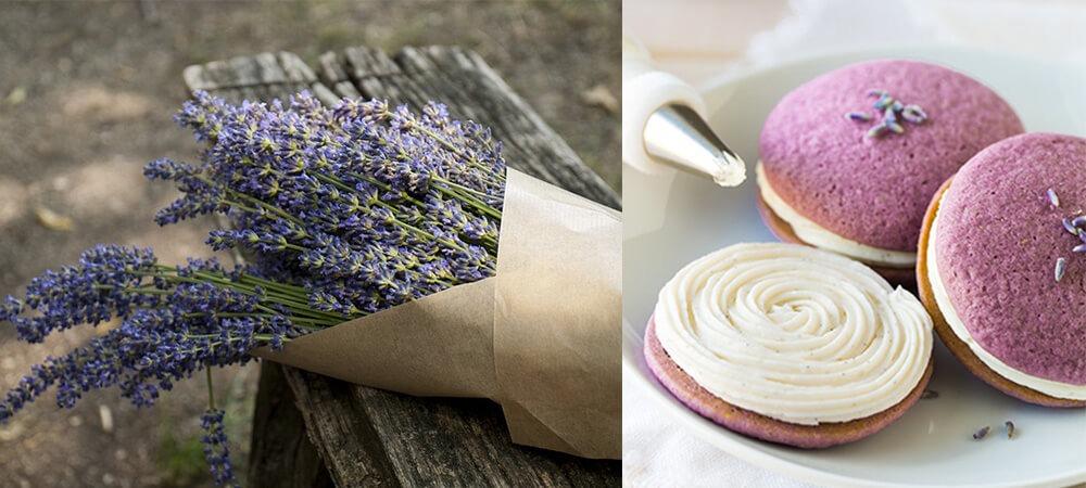 Lavender_Cupcakes1000x450